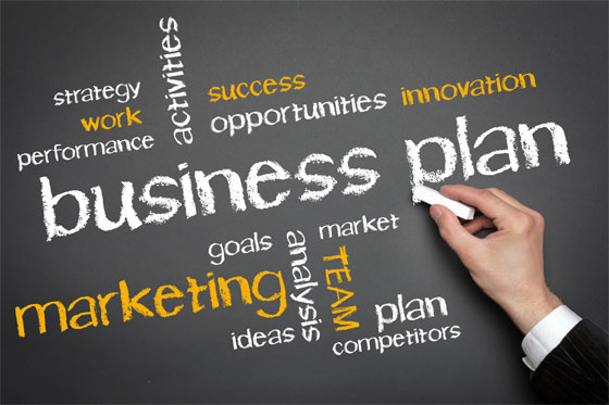 what are the essential elements of a business plan immigrationbiz